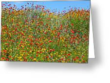 Wildflowers And Sky 2am-110541 Greeting Card