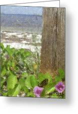 Wildflowers At The Beach Greeting Card