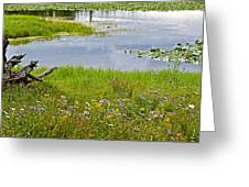 Wildflowers By Heron Pond In Grand Teton National Park-wyoming Greeting Card