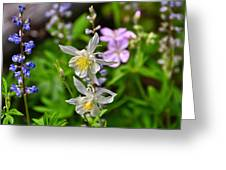 Wildflowers Greeting Card Greeting Card