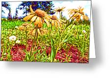 Wildflowers In The Wilds Of Colorado Greeting Card