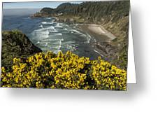 Wildflowers On An Atypical Winter's Day On The Oregon Coast Greeting Card