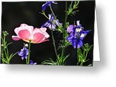 Wildflowers On Black Greeting Card