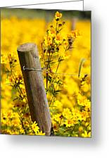 Wildflowers On Fence Post Greeting Card