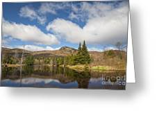 Wildlife Pond - Bethlehem New Hampshire Usa Greeting Card