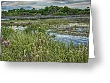 Wildlife Refuge Reflections Greeting Card