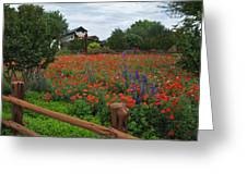 Wildseed Farms Greeting Card