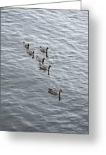 Willamette River Ducks Greeting Card