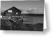 Willapa Bay I C Greeting Card