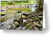 Williams River Headwaters Zen Rocks Greeting Card