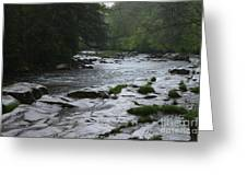 Williams River Rain Downpour Greeting Card