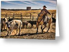 Williamson Valley Roundup 8 Greeting Card