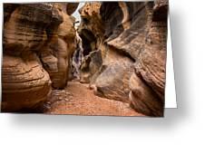 Willis Creek Slot Canyon 6 - Grand Staircase Escalante National Monument Utah Greeting Card
