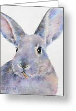 Willis Rabbit Greeting Card