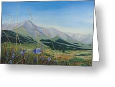 Willmore Wilderness Greeting Card