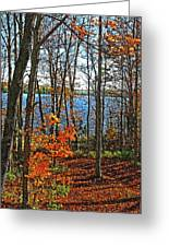 Willow Lake Greeting Card by Bill Morgenstern