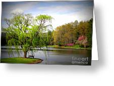 Willow Lake Greeting Card by Crystal Joy Photography
