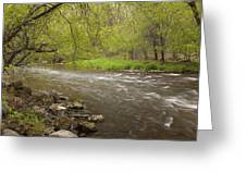 Willow River 3 Greeting Card