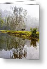 Willow Tree At The Pond Greeting Card