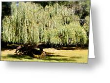 Willow Tree With Job Verse Greeting Card