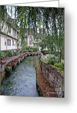 Willows Over The River Greeting Card