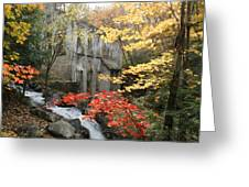 Willsons Ruins In Gatineau Park In Quebec Greeting Card by Rob Huntley