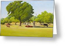 Wimberley Pastoral Greeting Card