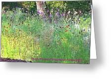 Wimberly Wildflowers Greeting Card
