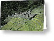 Winay Wayna Inca Trail Peru Greeting Card