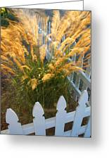 Wind In The Grass Greeting Card