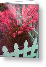 Wind In The Grass - Red Greeting Card