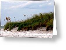 Wind In The Seagrass Greeting Card