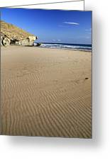 Wind Signals At The Beach Greeting Card