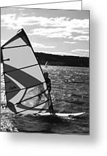 Wind Surfer II Bw Greeting Card