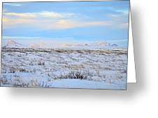 Wind Swept Plains Of Iceland Greeting Card