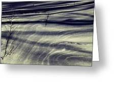 Wind Swept Snow Greeting Card