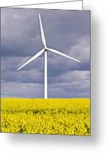 Wind Turbine With Rapeseed Greeting Card