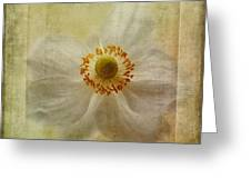 Windflower Textures Greeting Card