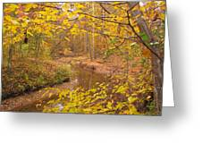 Winding Creek Greeting Card