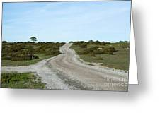 Winding Gravel Road Through A Landscape With Lots Of Junipers Greeting Card