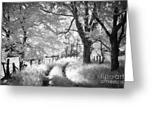 Winding Journey Through The Blue Ridge Greeting Card