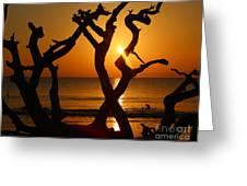 Winding Light Greeting Card