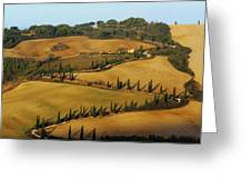 Winding Road And Cypress Trees In Tuscany 1 Greeting Card