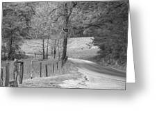 Winding Road In Wilderness Black And White Greeting Card by Sherri Duncan