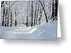 Winding Snowy Road In Winter Greeting Card