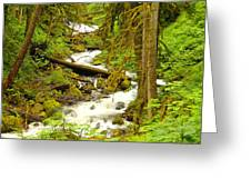 Winding Through The Forest Greeting Card