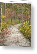 Winding Woods Walk Greeting Card