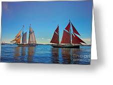 Windjammers  At A Maine Harbor Greeting Card