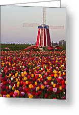 Windmill Of Flowers Greeting Card
