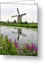 Windmills Of Kinderdijk With Flowers Greeting Card